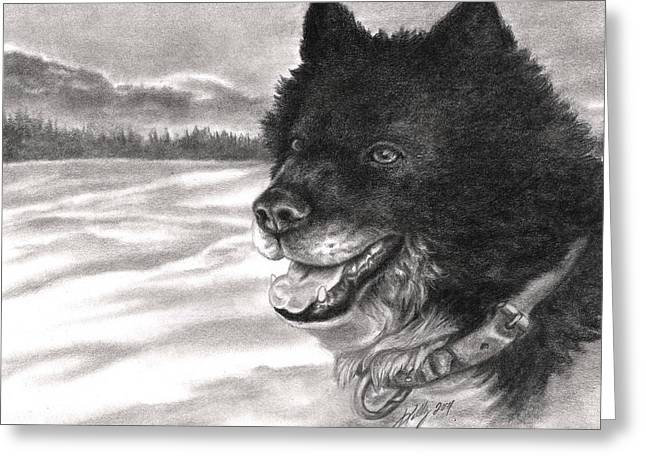 Snow Dog Greeting Card by Kathleen Kelly Thompson
