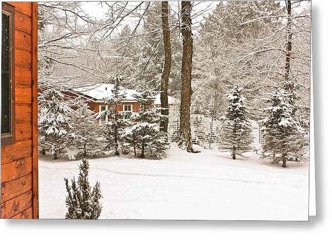 Snow In The Adirondacks Greeting Card by Ann Murphy