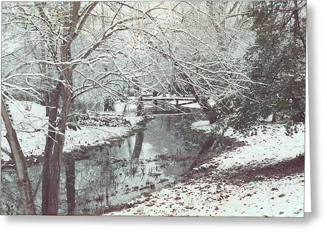 Greeting Card featuring the photograph Snow On The Bayou by Louis Nugent