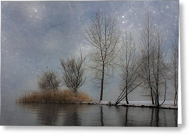 Snowfall Greeting Card by Joana Kruse
