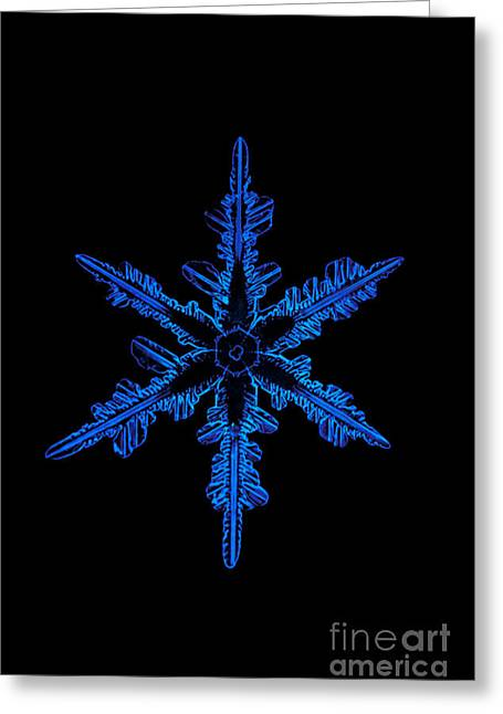 Snowflake Crystal Greeting Card by Science Source