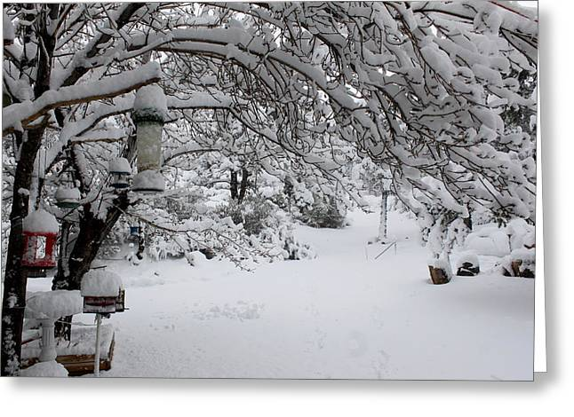 Snowscape Four Greeting Card