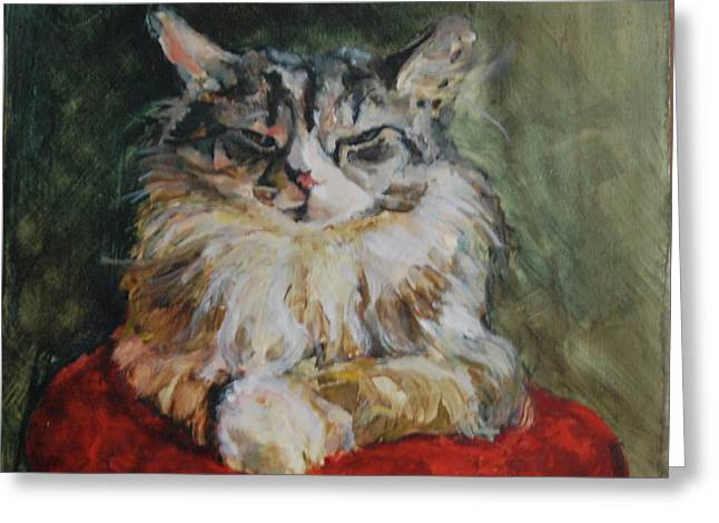 Maine Coon Greeting Cards - Snowshoe Harwood Greeting Card by June Harding