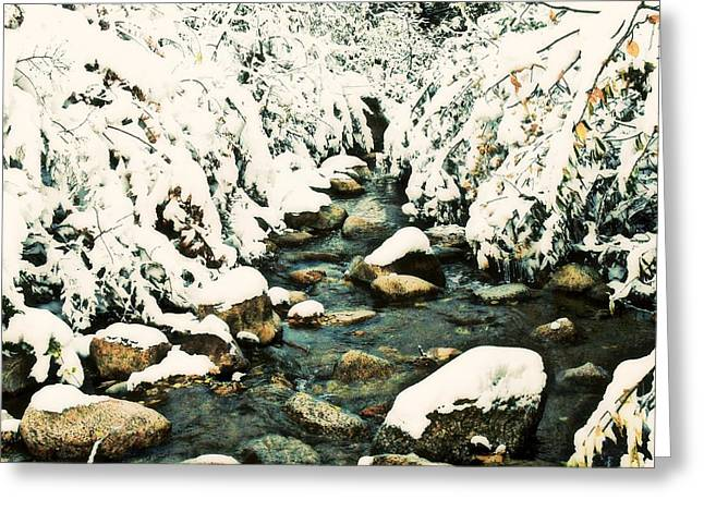 Snowy Creek Greeting Card by Clarice  Lakota
