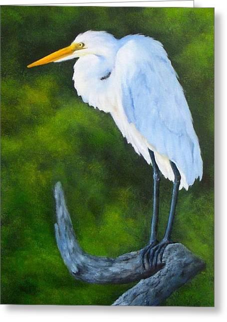 Snowy Egret Greeting Card by Francine Henderson