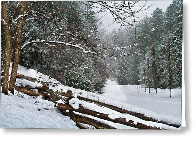Snowy Fence Greeting Card by Debra and Dave Vanderlaan