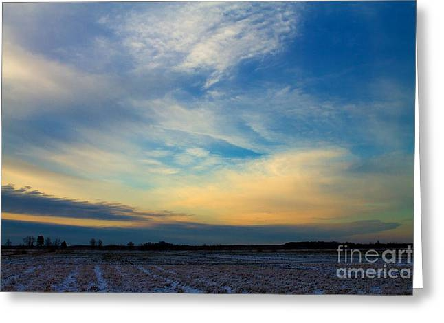 Snowy Field Sunset Greeting Card by Ursula Lawrence