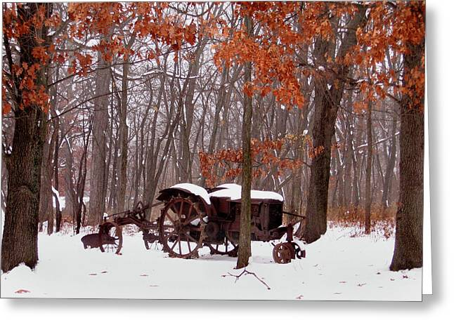 Snowy Implement Greeting Card by Ed Golden