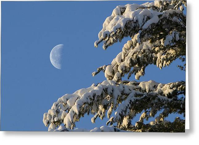 Snowy Moon Greeting Card by Larry Landolfi