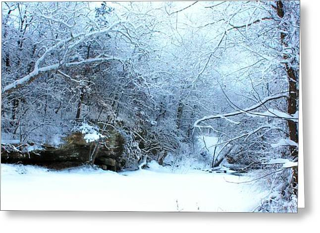Snowy Morn Greeting Card
