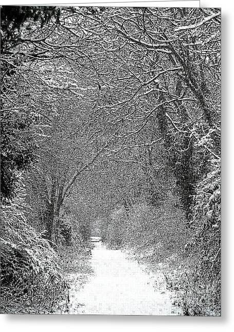 Greeting Card featuring the photograph Snowy Path by Linsey Williams