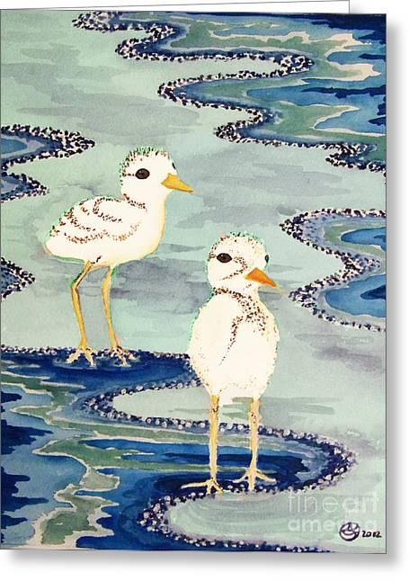 Snowy Plover Chicks Greeting Card by Alexandra  Sanders