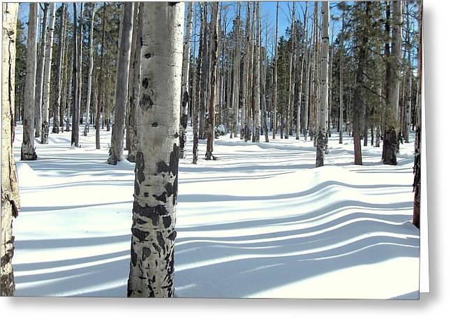Snowy Shadows Greeting Card