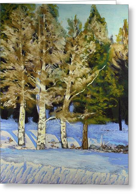 Snowy Sunset Aspen Greeting Card by Drusilla Montemayor