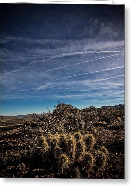 So Lonesome Greeting Card by Merrick Imagery