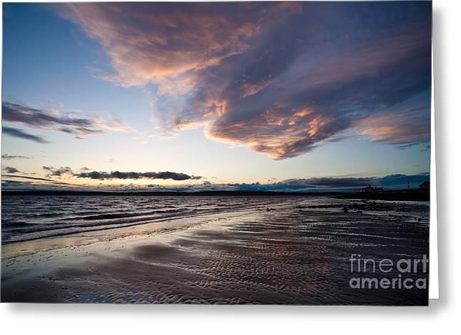 Soaring Beach Greeting Card by Mike Reid