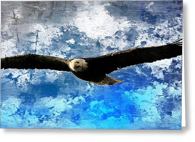Soaring Greeting Card by Carrie OBrien Sibley