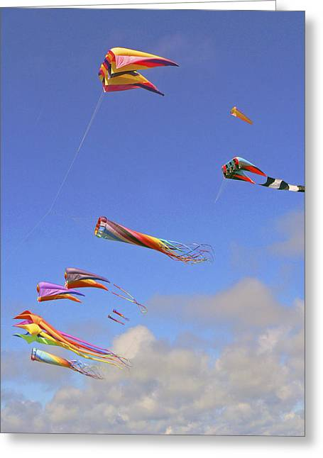 Soaring With The Clouds Greeting Card by Pamela Patch