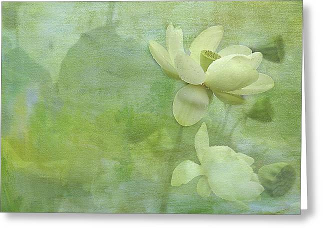 Soft Lillies Greeting Card