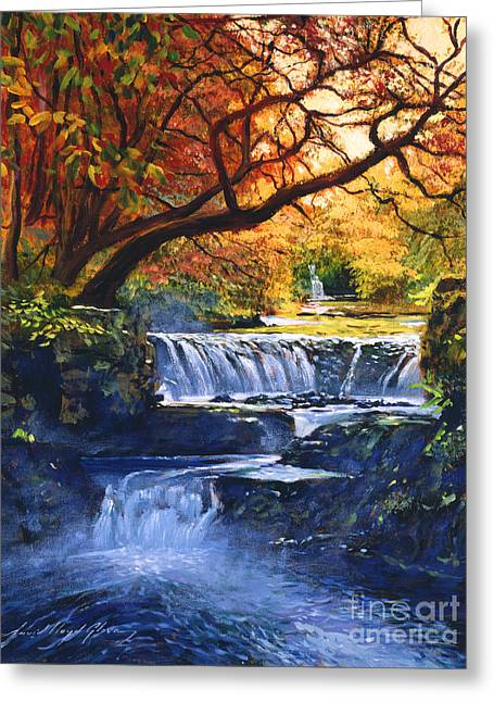 Soft Sounds Of Water Greeting Card by David Lloyd Glover