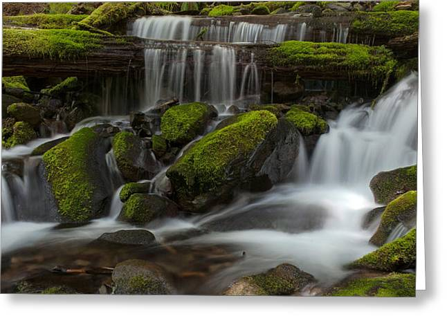 Sol Duc Stream Greeting Card by Mike Reid