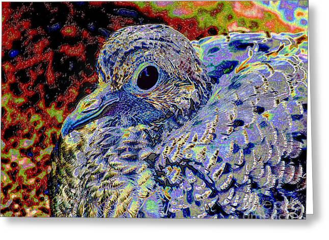 Solar Dove Greeting Card by Tammy Ishmael - Eizman