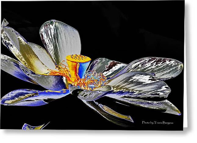 Greeting Card featuring the photograph Solarized Lotus B by Travis Burgess
