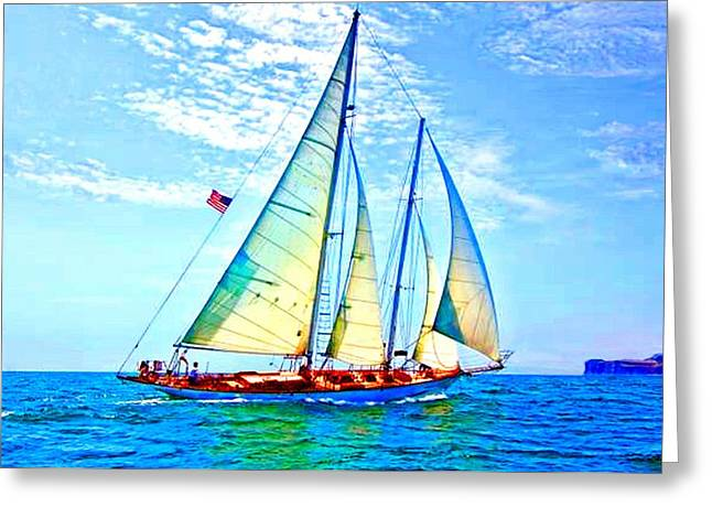 Solo Sailing Greeting Card by Paula Greenlee