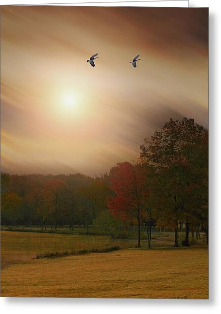 Some Days Are Better Than Others Greeting Card by Tom York Images