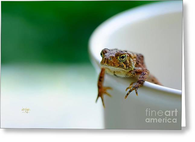 Somebody Needs Coffee Greeting Card by Lois Bryan