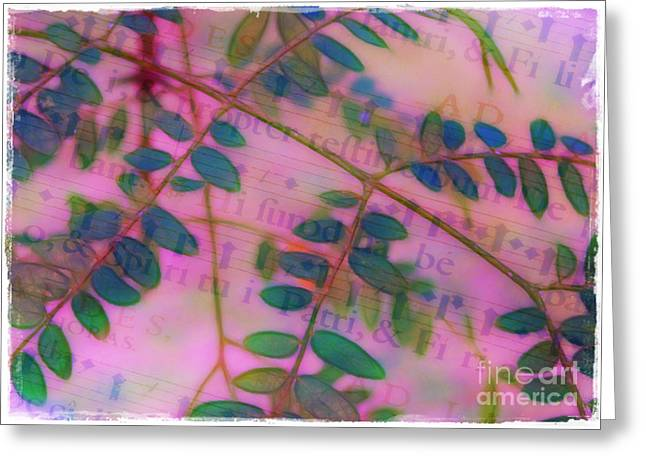 Song Of The Honey Locust Greeting Card by Judi Bagwell