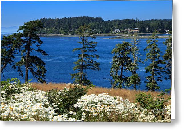 Sooke Harbour And The Strait Of Juan De Fuca Greeting Card by Louise Heusinkveld