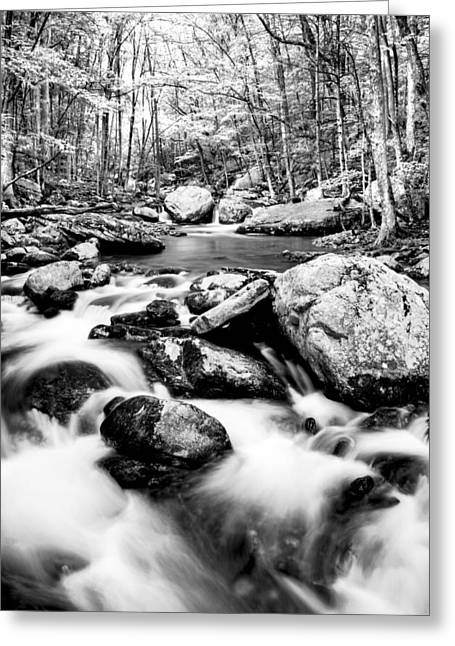 Soothing Greeting Card by Darren Fisher
