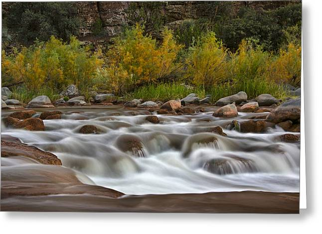 Soothing Waters Of The Salt River 3 Greeting Card by Dave Dilli
