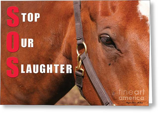 Greeting Card featuring the photograph Sos Stop Our Slaughter by Megan Dirsa-DuBois