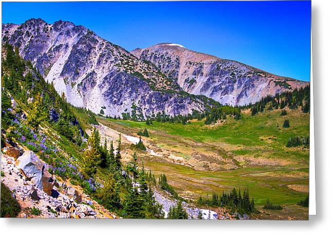Sourdough Ridge - Mount Rainier National Park Greeting Card
