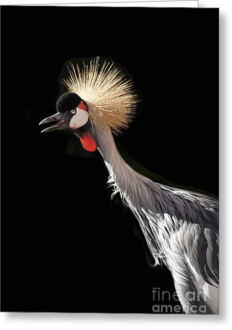 South African Grey Crowned Crane Kaanapali Maui Hawaii Greeting Card by Sharon Mau