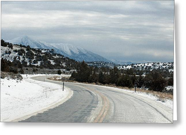 Greeting Card featuring the photograph South On Highway 447 by Gary Rose