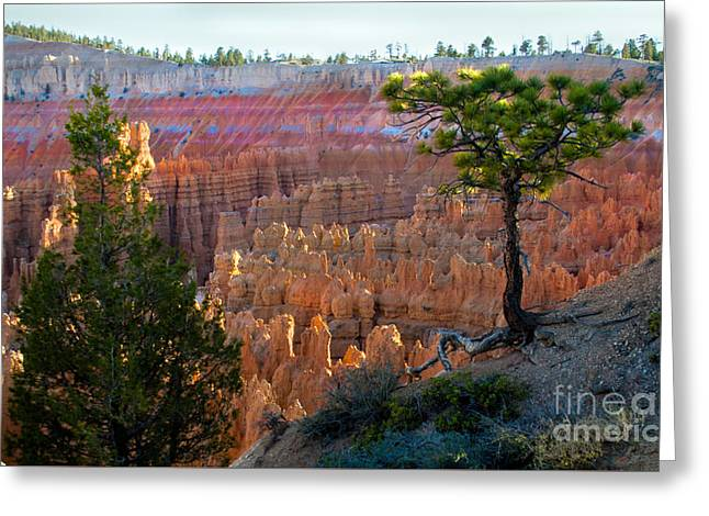South Side Of Sunrise Point Greeting Card by Robert Bales