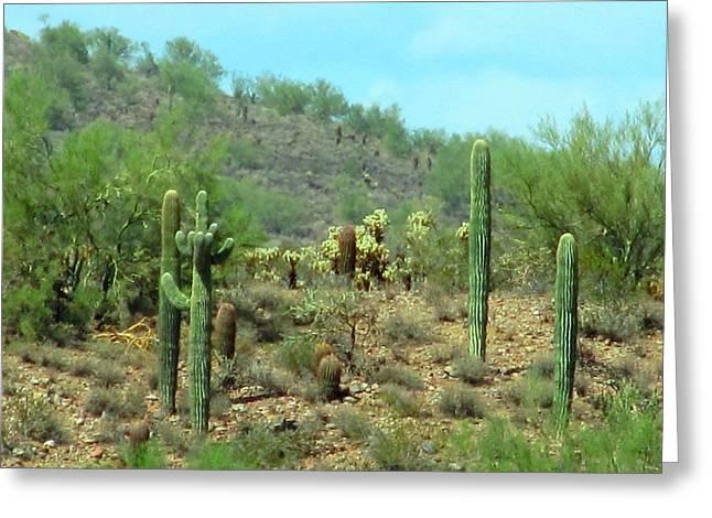South West Desert Greeting Card by David Killian