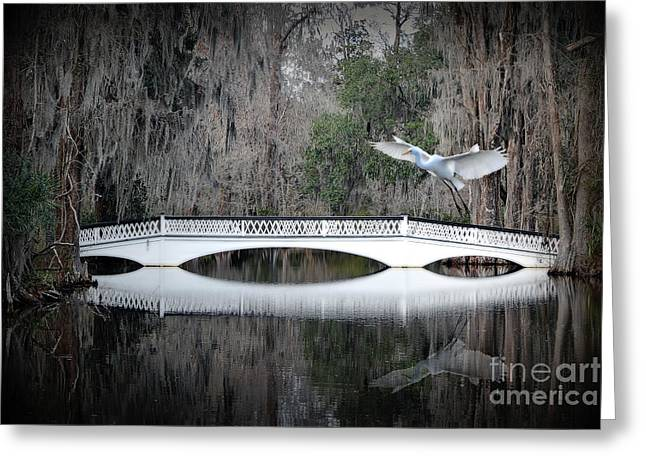 Greeting Card featuring the photograph Southern Plantation Flying Egret by Dan Friend