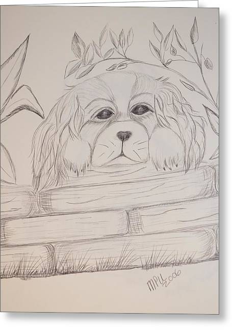 Greeting Card featuring the drawing Spaniel Pup by Maria Urso
