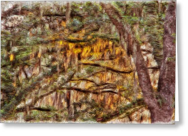 Spanish Moss And Sunset Greeting Card