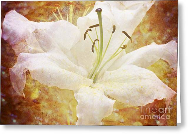 Sparkling Lily Greeting Card