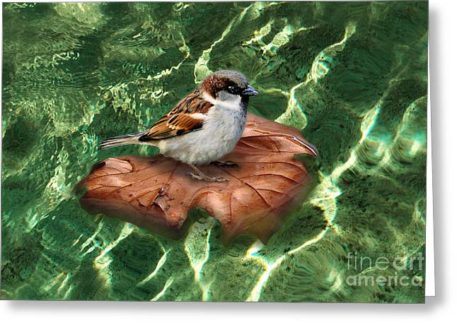 Greeting Card featuring the digital art Sparrow On A Quest by Rosa Cobos