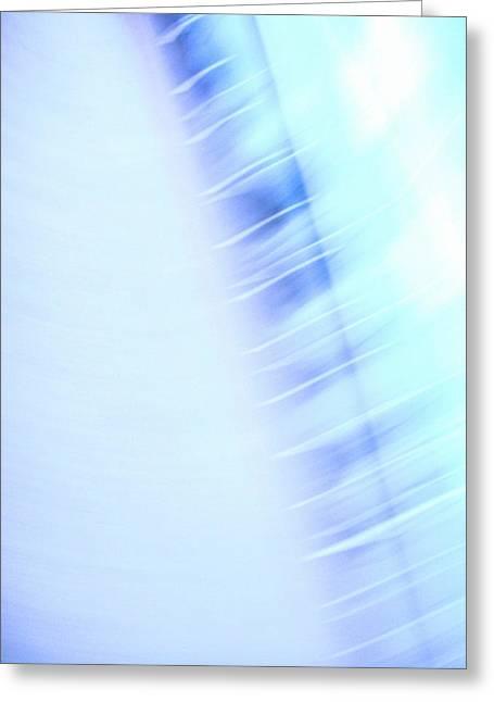 Speed Greeting Card by Roberto Alamino