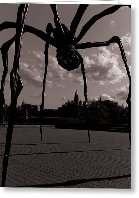 Greeting Card featuring the photograph Spider by Josef Pittner