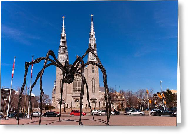Greeting Card featuring the photograph Spidy by Josef Pittner
