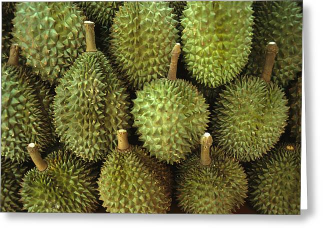 Spiny Green Durian Fruit Sold Greeting Card by Todd Gipstein