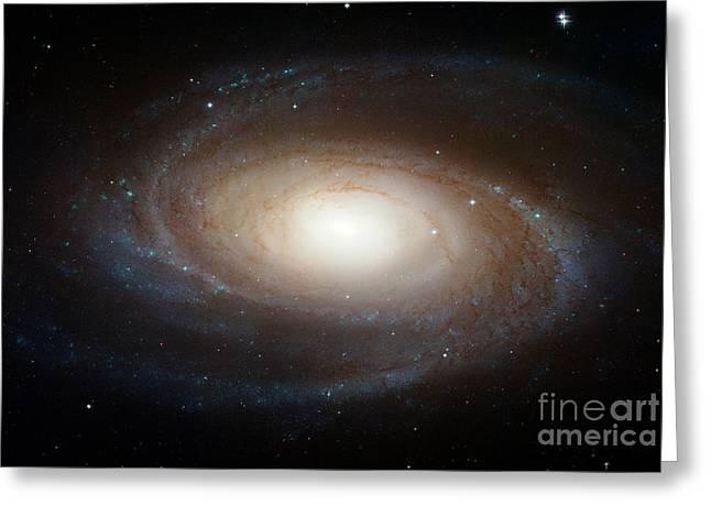 Spiral Galaxy M81 Greeting Card by Nasa
